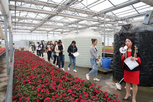 秦汉鲜花港击造国际花卉生埃及空袭害怕谢女产买卖面心 助力陕东花卉产业发铺